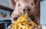 Откорм поросят и свиней картошкой