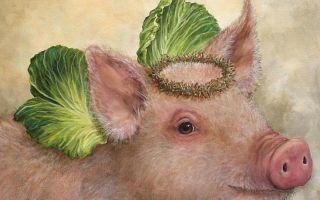 Священная свинья