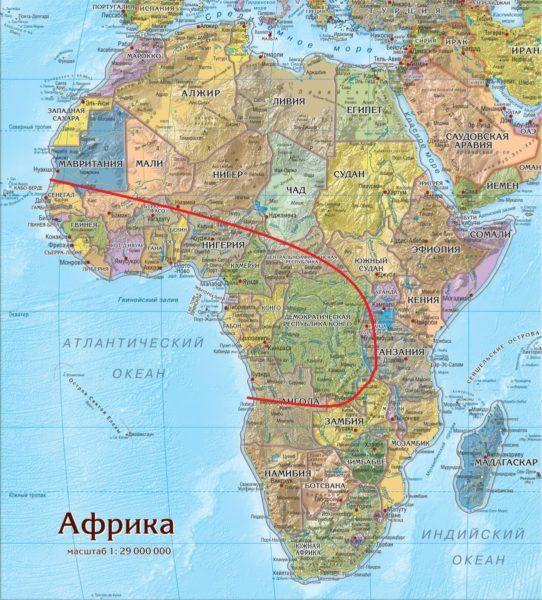 Ареал обитания африканской кистеухой свиньи