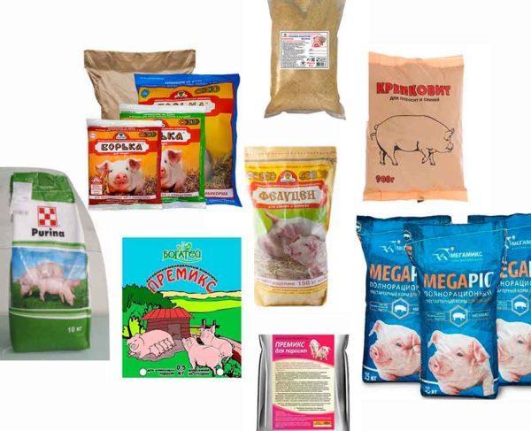 Виды премиксов для свиней и поросят
