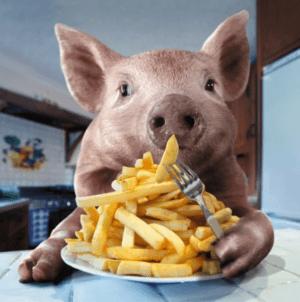 Свинья ест картошку фри