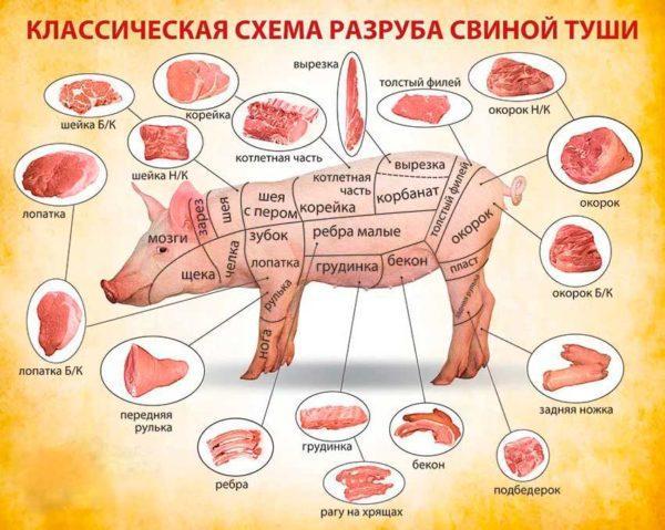 Схема разруба свиной туши